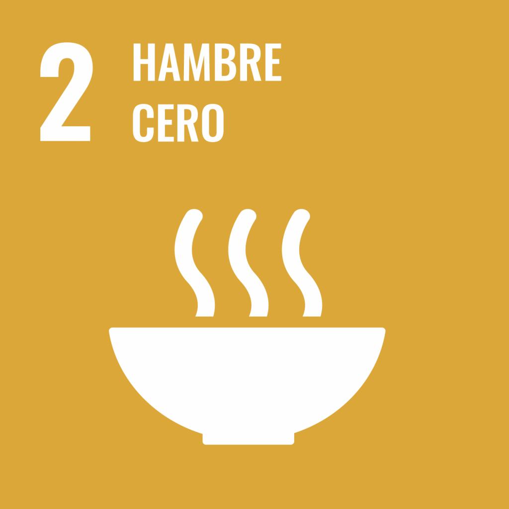 Logotipo ODS 2 Hambre cero