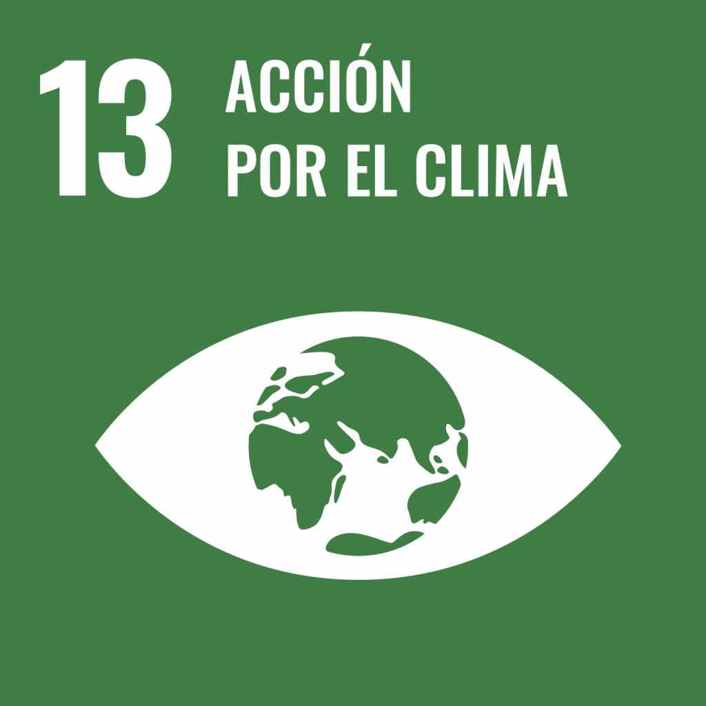 Logotipo ODS 13 Acción por el clima